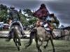 lipany-2015-jezdci